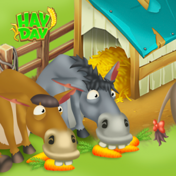Anes mangent carottes hay day