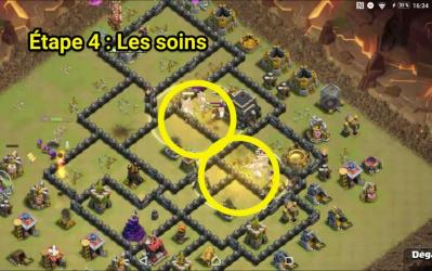 Full cochons sort soin 4
