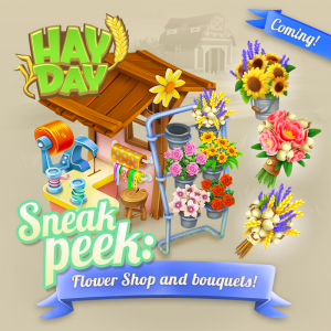 Sneak peek 2 fleuriste maj octobre 2017 hay day